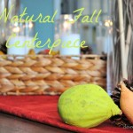 natural-fall-centerpiece-cleverlyinspired-17_thumb.jpg