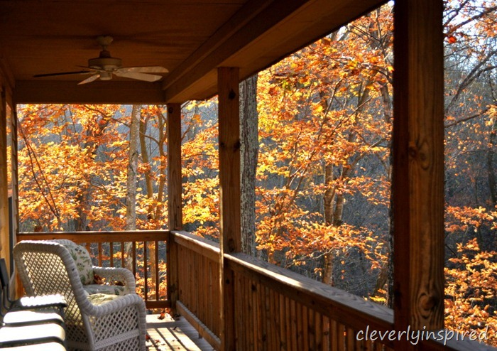 fall foliage @cleverlyinspired (2)