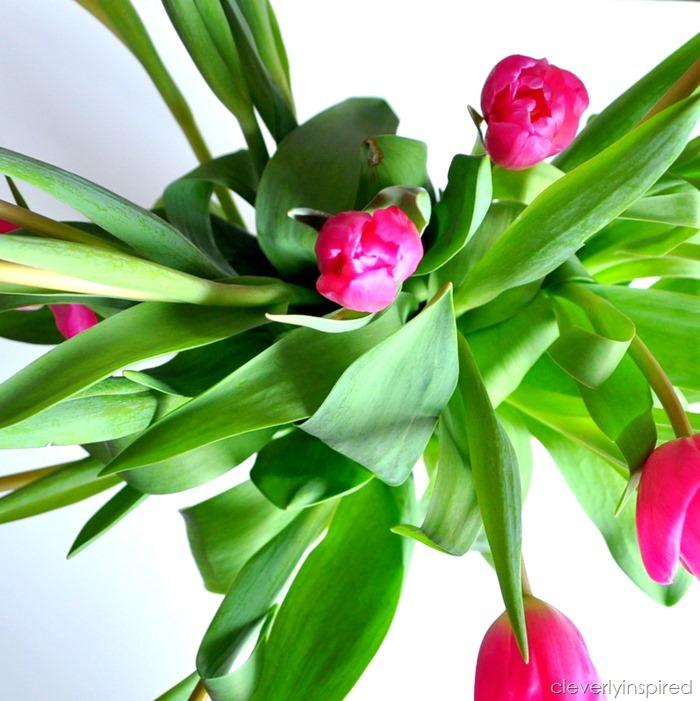 tulip valentine @cleverlyinspired (1)