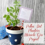 polka-dot-planters-cleverlyinspired-2_thumb.jpg