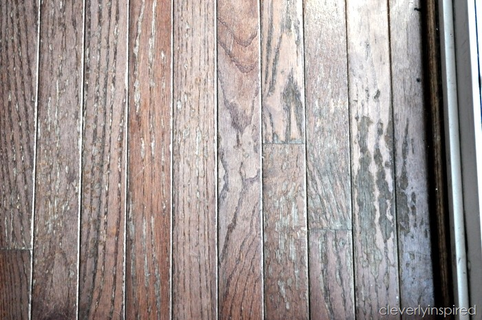 painting a hardwood floor @cleverlyinspired (1)