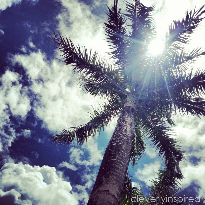 10 reasons to visit puerto rico @cleverlyinspired (4)