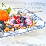 fresh-blueberry-whipped-cream-recipe-cleverlyinspired-1.jpg