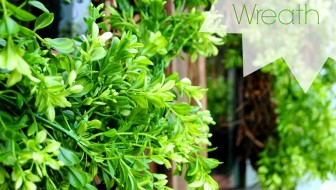 DIY-boxwood-wreath-cleverlyinspired-1.jpg