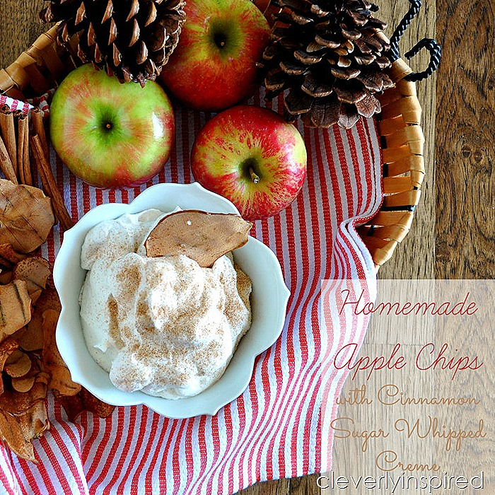 homemade apple chips with cinnamon sugar whipped creme @cleverlyinspired (4)