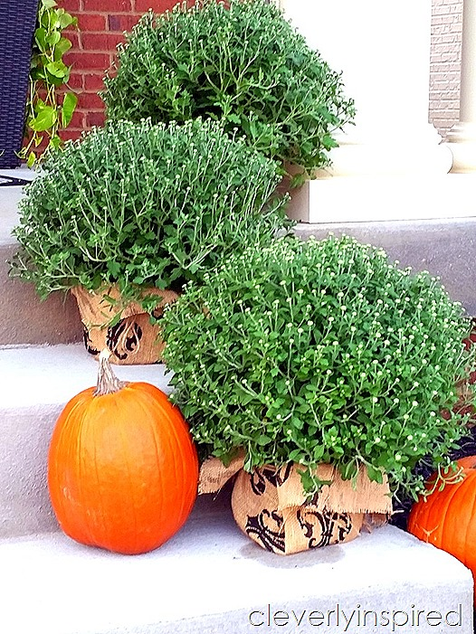 cheap update for plastic planters @cleverlyinspired (10)