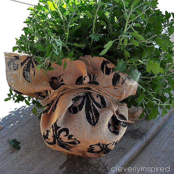 cheap update for plastic planters @cleverlyinspired (2)