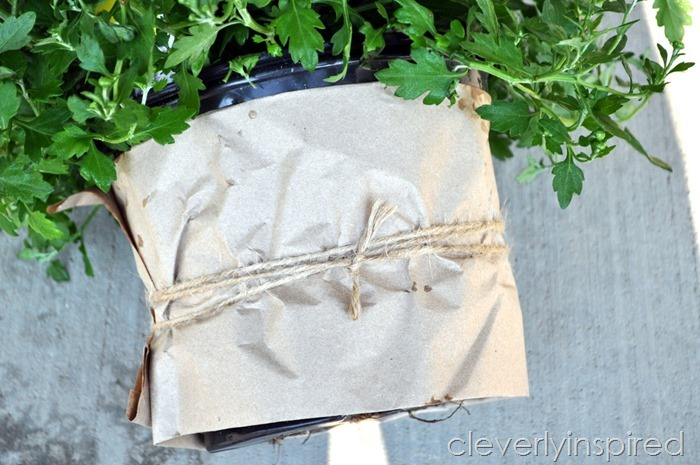 cheap update for plastic planters @cleverlyinspired (5)