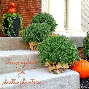 Cheap update for plastic planters