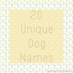 unique-dog-names.jpg