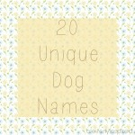 20 Unique Dog Names