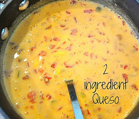 2 ingredient Queso Recipe