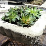 diy-concrete-planter-cleverlyinspired-5.jpg