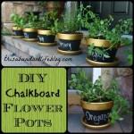 flowerpots-1024x1024.jpg