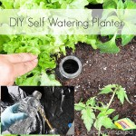 DIY-self-watering-planter-cleverlyinspired-3.jpg