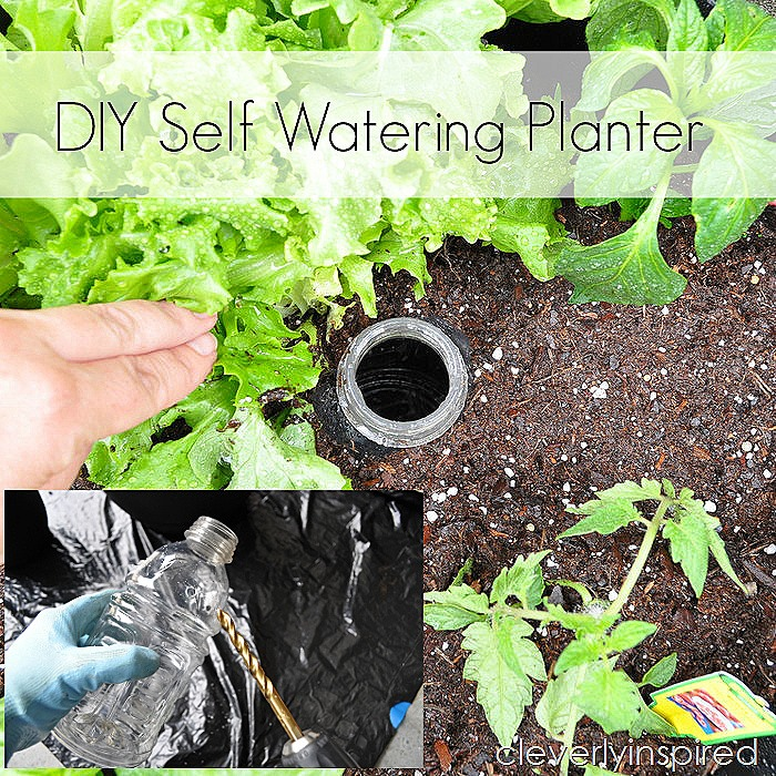 DIY self watering planter @cleverlyinspired (3)