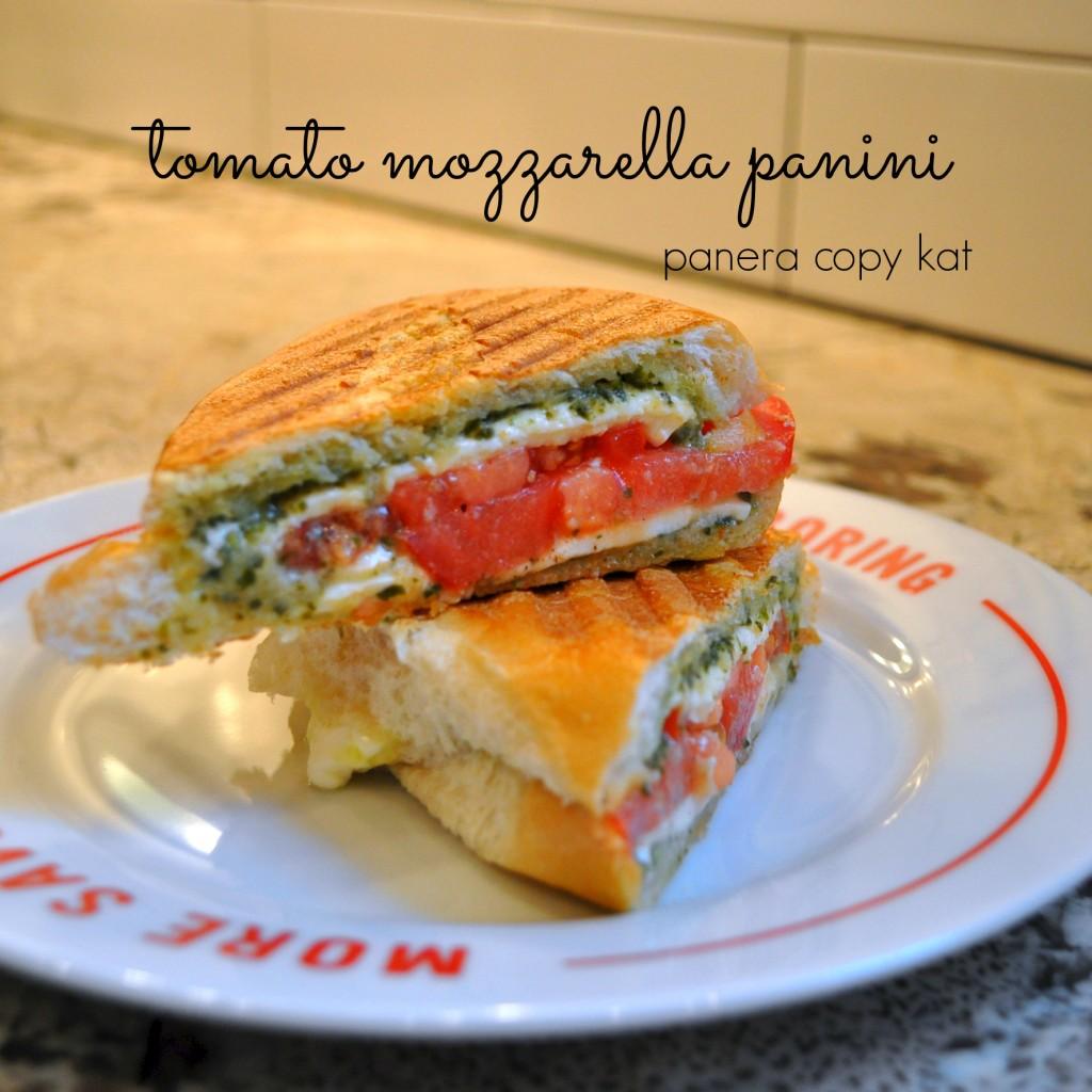 tomato mozzerella panini @cleverlyinspired (1)