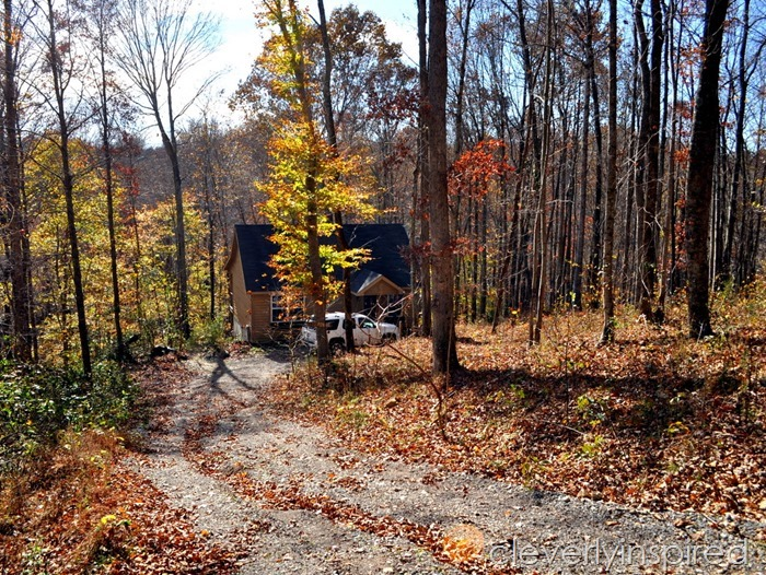 barren river lakehouse for sale (3)