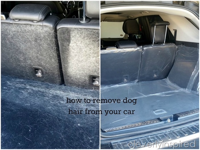 how to remove doghair from your car @cleverlyinspired (2)