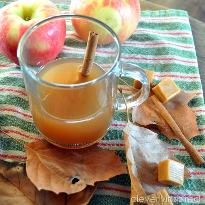 sugar free apple cider recipe @cleverlyinspired (2)