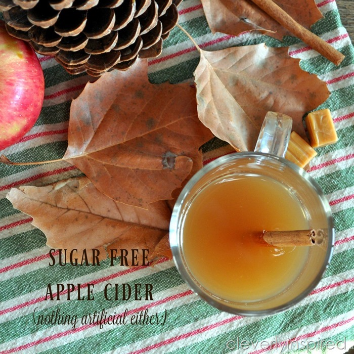 Sugar free Apple Cider Recipe (no artificial sweeteners)