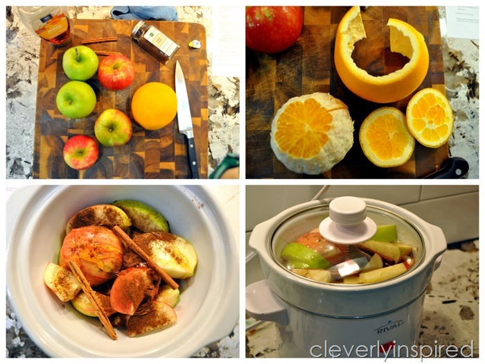 sugar free apple cider recipe @cleverlyinspired (7)